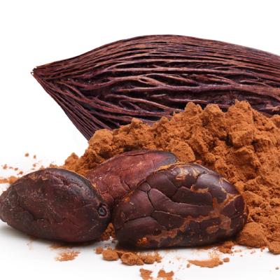 Cacao - Proveedor de productos orgánicos